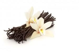 ваниль: цветок и палочки