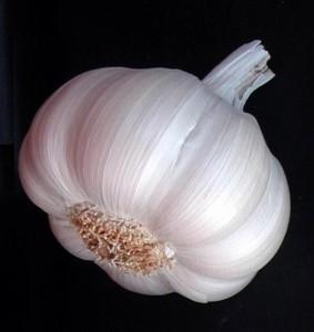 головка чеснока