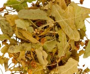 Липа сушеные листья