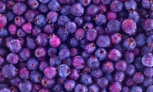 ирга ягоды