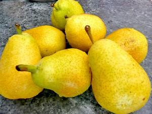 спелые желтые груши