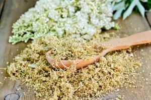 заготовка таволги сушеные цветки