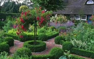 Бордюры из самшита в саду