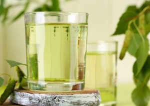 чай из березовых листьев