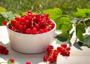 ягоды красной смородины на столе