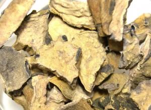 сушеное корневище кубышки желтой