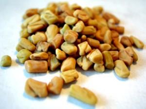 семена шамбалы крупный план