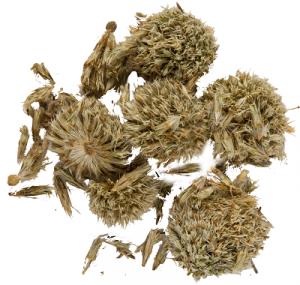сушеные соцветия и семена мордовника обыкновенного