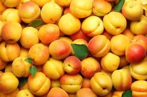 много абрикосов