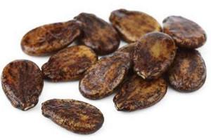 Арьуз обыкновенный - полезные свойства, состав, заготовка, рецепты использования в народной медицине