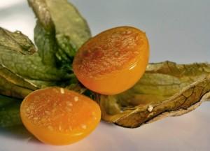 спелый плод физалиса в разрезе крупный план