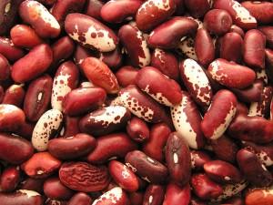 Фасоль обыкновенная бобы