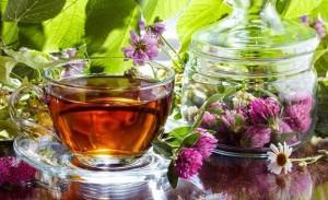 чай из клевера в чашке и чайнике