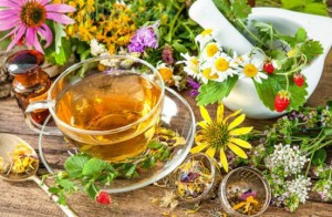 лечебные травы и чай в чашке