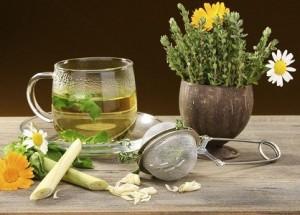 травы и чай успокаивающий