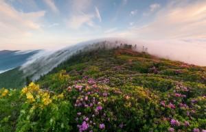 Саган-Дайля в горах