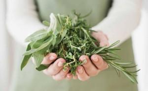 Лечебные травы от псориаза