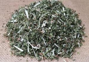 Белокудренник черный трава сушеная