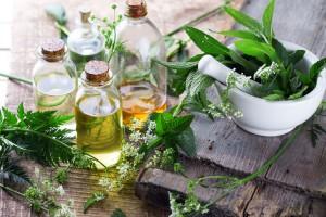лечение мигрени травами масла и растения