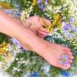 Травы для здоровья и красоты ног