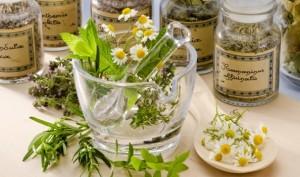Лекарственные растения при облысении