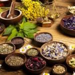 Лекарственные растения для волос