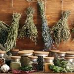 Травы для лечения артрита