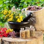 Лечение женского бесплодия травами