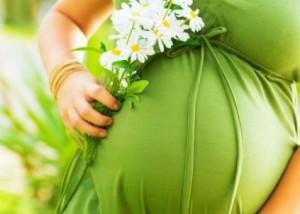 Травы для зачатия