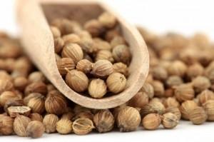 Семена кориандра при бесплодии мужчины