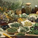 Травы при отравлении. Рецепты