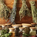 Лечение подагры травами
