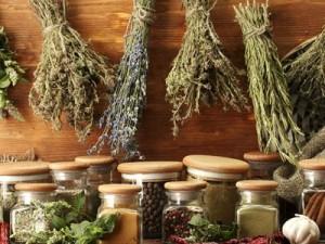 Лекарственные растения при подагре